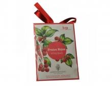 Perfumador de Armario Green Botanic Iap pharma Frutos Rojos Vitalidad casa hogar